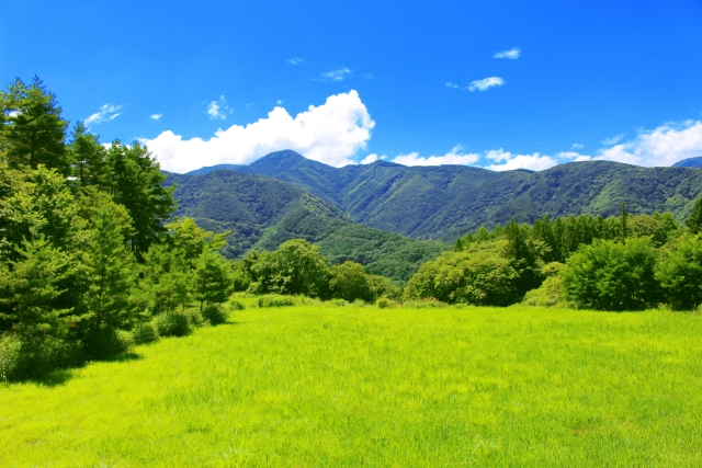 田舎の大自然